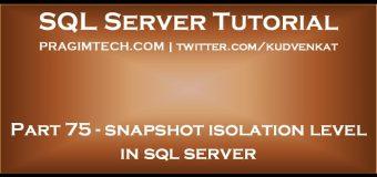 Snapshot isolation level in sql server