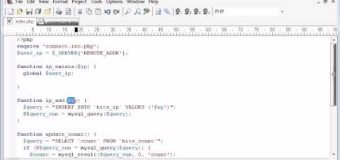 Beginner PHP Tutorial – 125 – Creating a Database Hit Counter Part 3